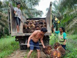 Campuri Urusan Petani dan Koperasi, Kejati Riau Offside, Jaksa Agung Didesak Tegur Bawahan-nya